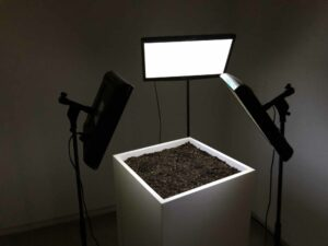 Sofiane_Zouggar, Artefact, 2018, from the project Memory of Violence, installation view, screens, wooden boxes, soil and tripods, dimension variable; commissioned by Sharjah Art Foundation. Collaboration with A.R.I.A.